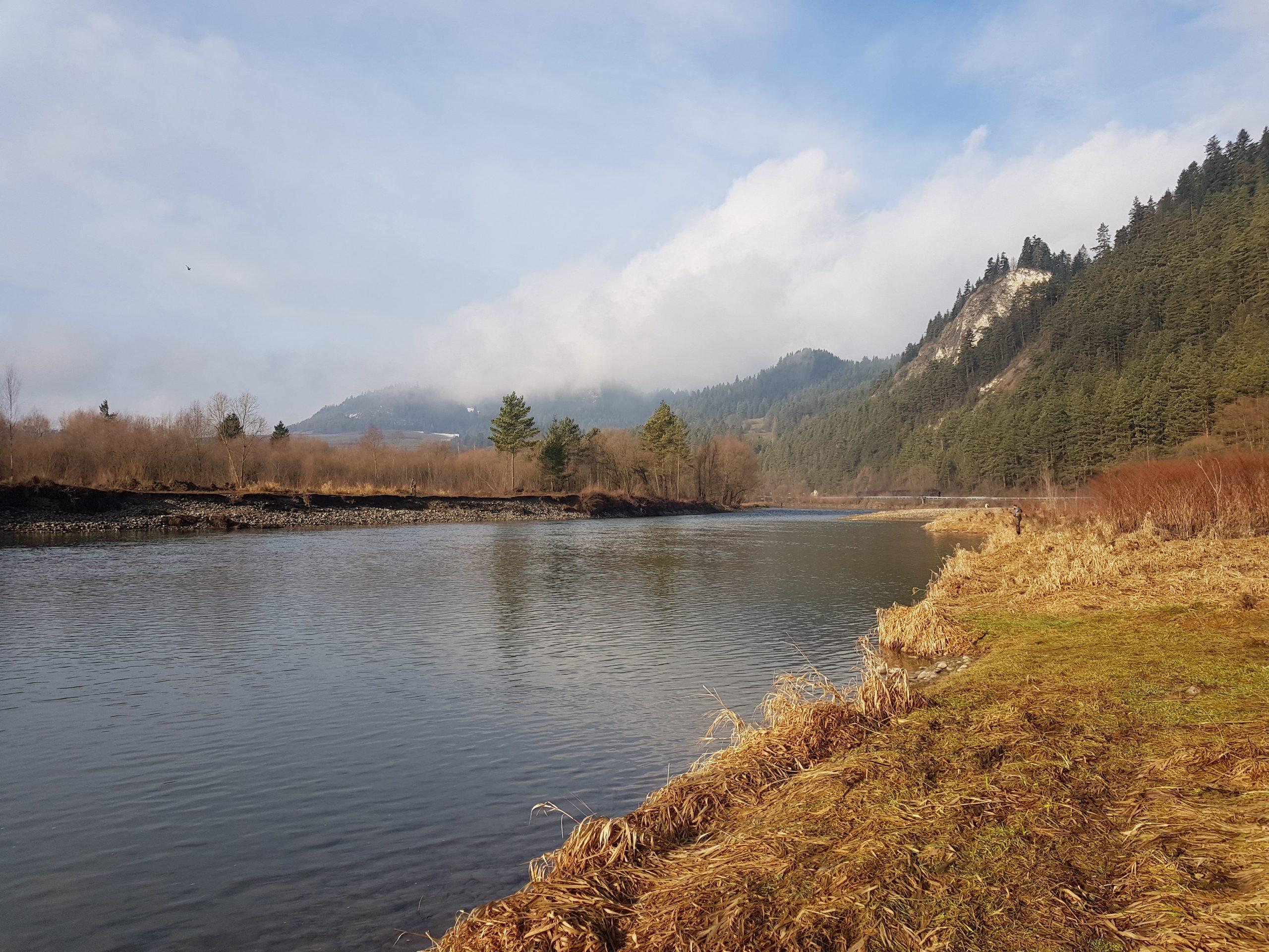 European Taimen fishing zone (Hucho-hucho)