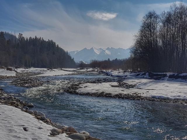 Winter fishing for grayling, perdigon flies and blue dun fishing