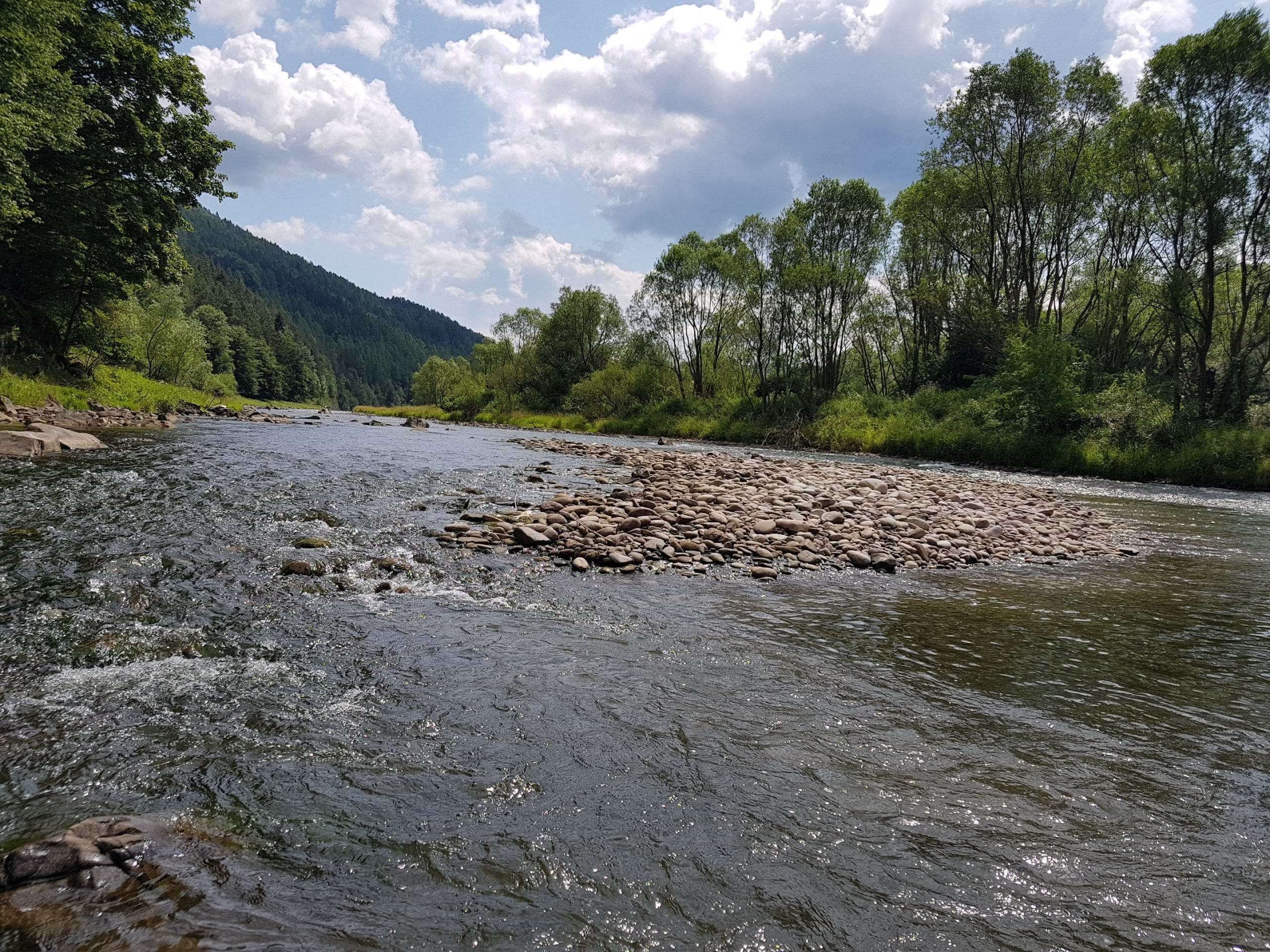 East Europe Fly Fishing Adventure - brown trout paradise